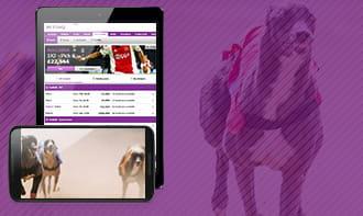 Betting newspapers betdaq mobile portland vs memphis bettingexpert football