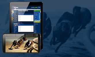 Betfred Greyhound Betting – The #1 review of the site and ...