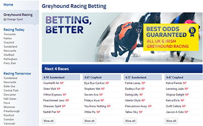 Skybet Homepage Skybet Homepage Greyhound Selection Skybet