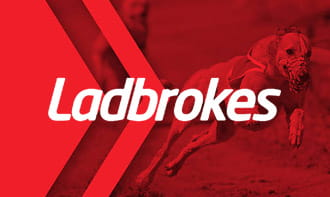 Greyhound Betting Explained: Full Guide to the Best Racing ...