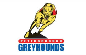Peterborough dogs betting odds namawi mining bitcoins