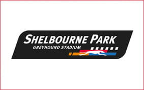 Shelbourne park betting odds horse race betting systems